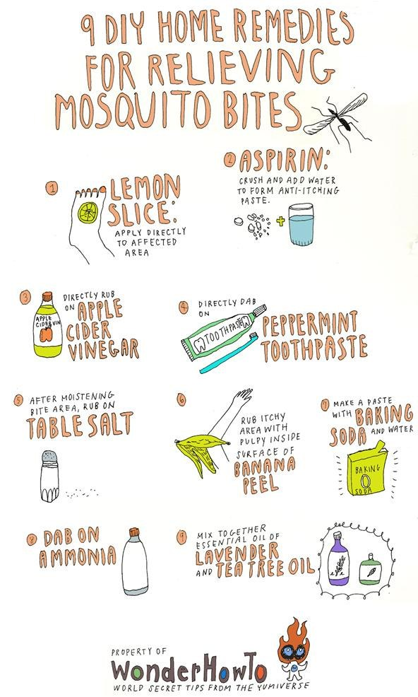 9-diy-home-remedies-for-relieving-itchy-mosquito-bites.w654.jpg