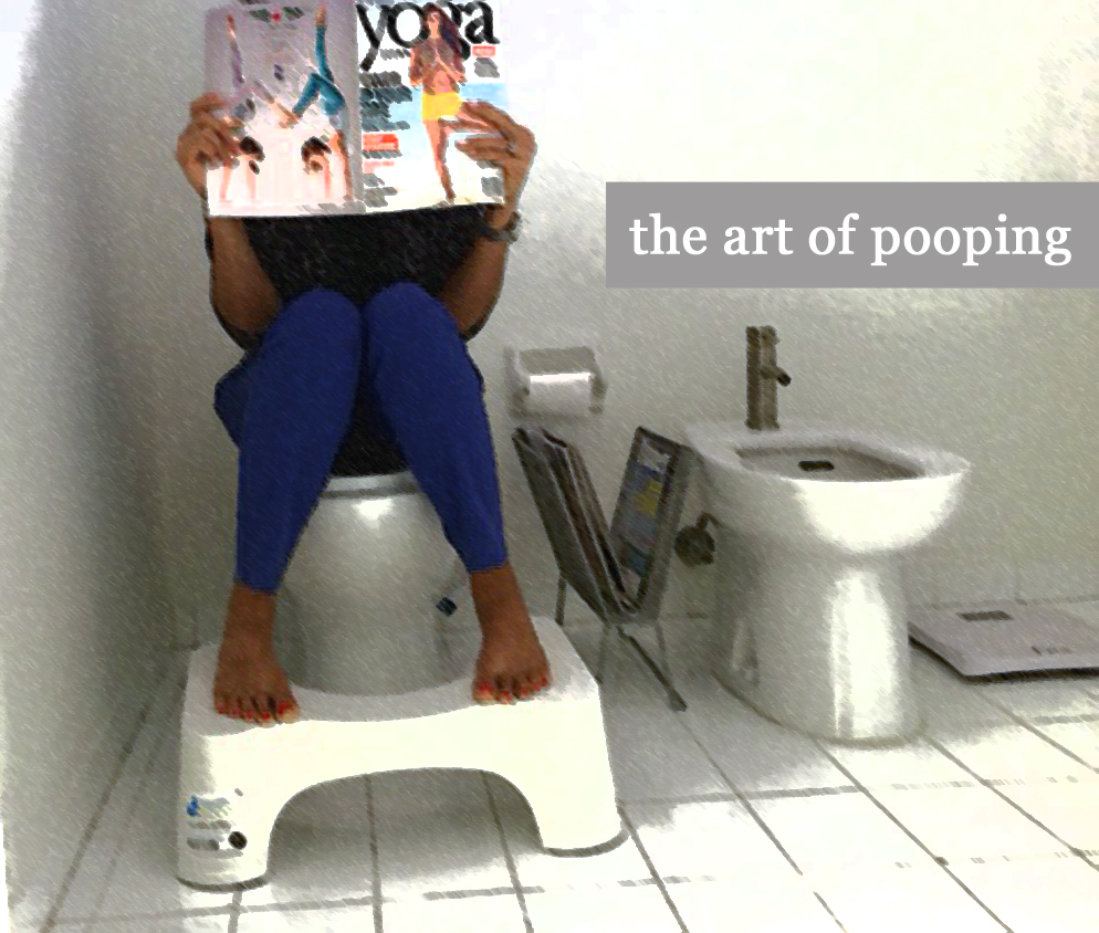 the art of pooping Fetishthe art of scat the art of scat by jessie2015 i was taken to the bathroom where the man sat on the toilet and proceeded to poop in front of me.