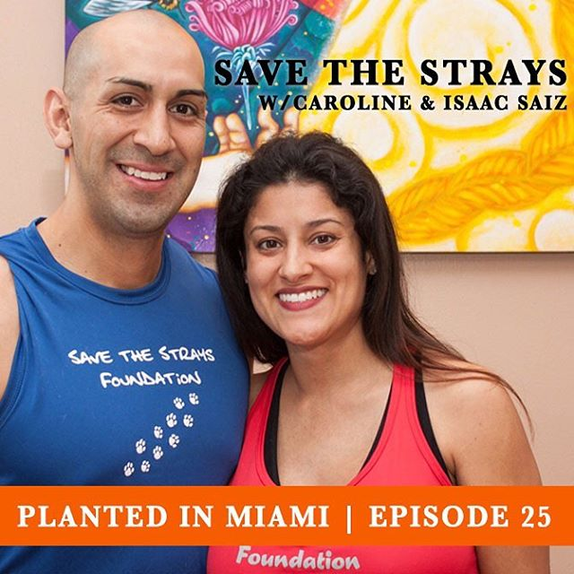 Who Saved Who?  This ubiquitous bumper sticker can be seen on the cars of those lucky pet owners that have adopted a dog or a cat from a rescue shelter. In this episode we sit down with Caroline and Isaac Saiz, the husband and wife team behind the local Save The Strays Foundation, a non-profit organization committed to  rescuing stray animals, placing them in foster and/or permanent homes and educating the public on animal-welfare issues.  Caroline and Isaac are truly inspiring locals who are pushing our city forward through their fantastic foundation and selfless devotion to animals.  We hope you enjoy the podcast and become inspired to become a foster parent or to rescue one of the many dogs or cats that are in need of loving owners and homes. Download on iTunes or Stitcher or stream directly from www.plantedinmiami.com.