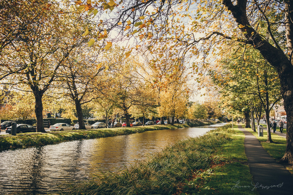 Autumn in Dublin City