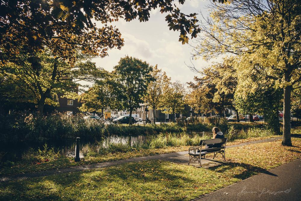 Autumn-Dublin-Sony-A6000-72.jpg