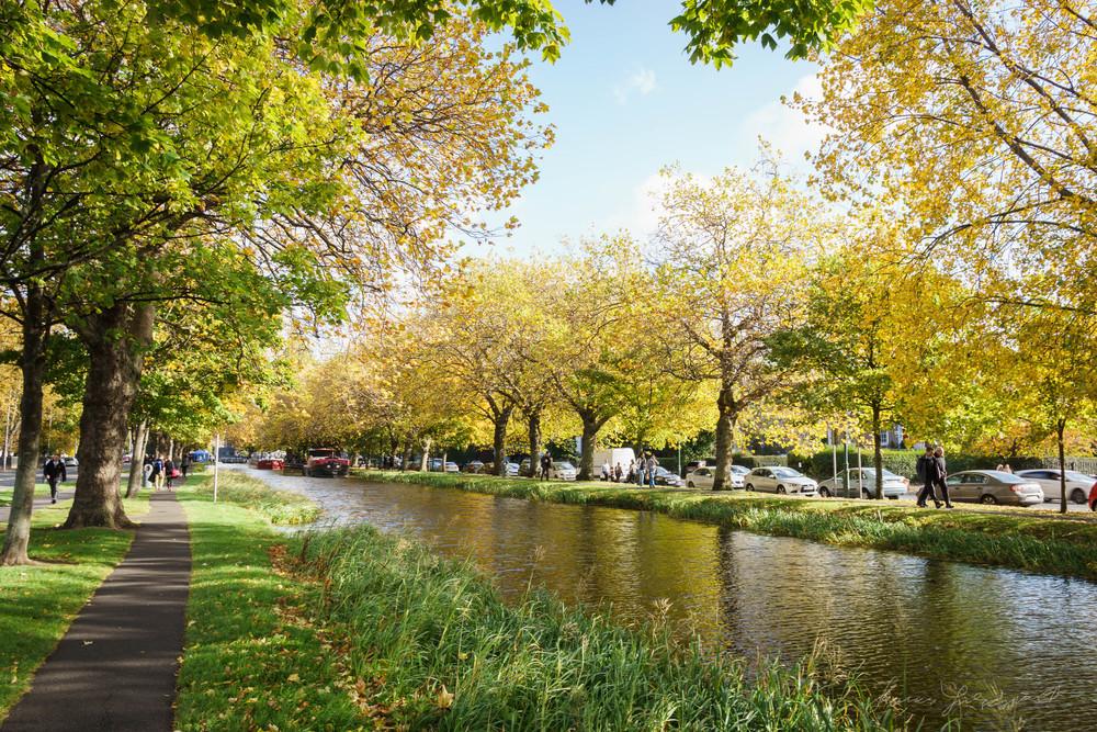 Autumn-Dublin-Sony-A6000-70.jpg