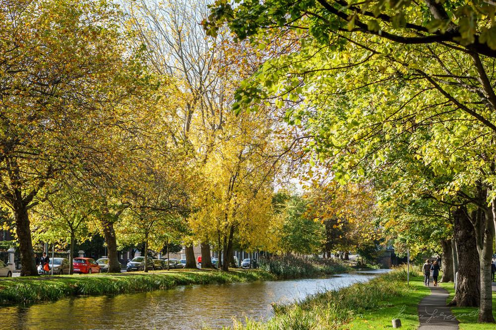 Autumn-Dublin-Sony-A6000-60.jpg