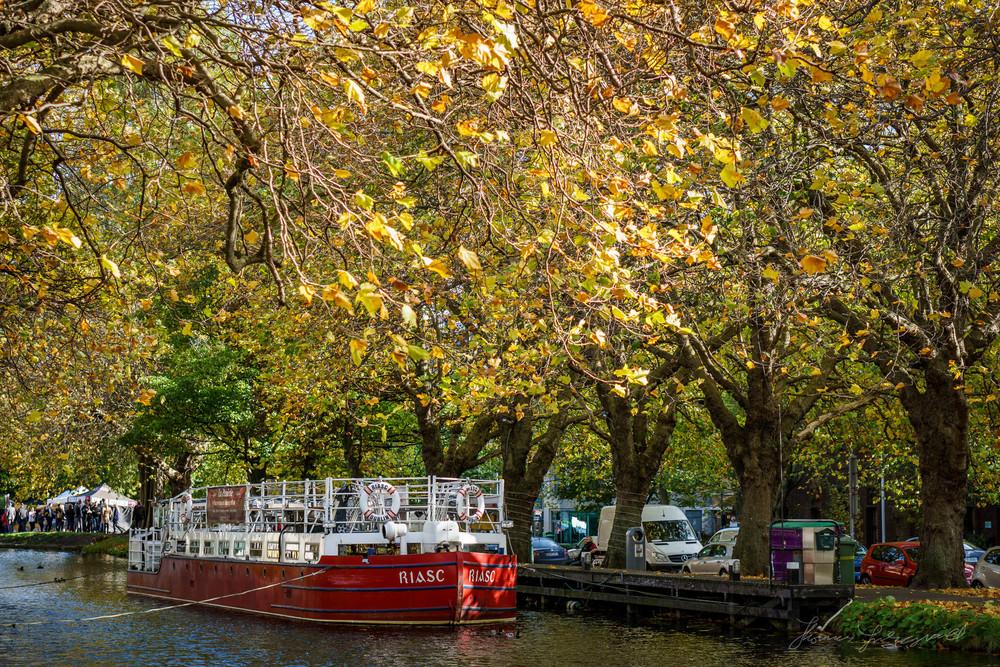 Autumn-Dublin-Sony-A6000-58.jpg