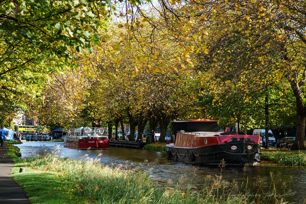 Autumn-Dublin-Sony-A6000-55.jpg