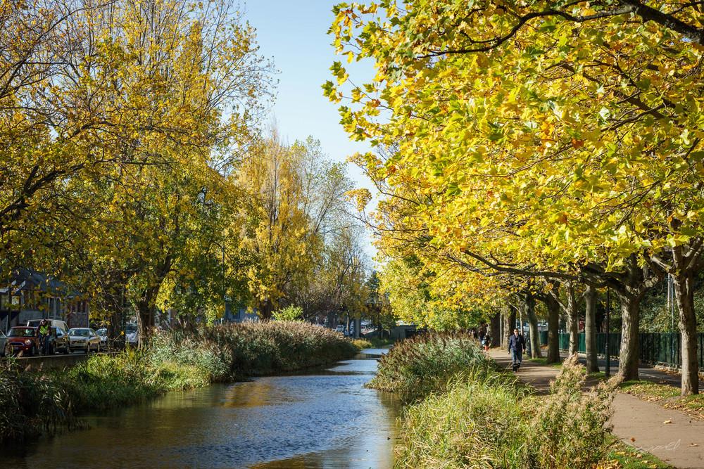 Autumn-Dublin-Sony-A6000-38.jpg