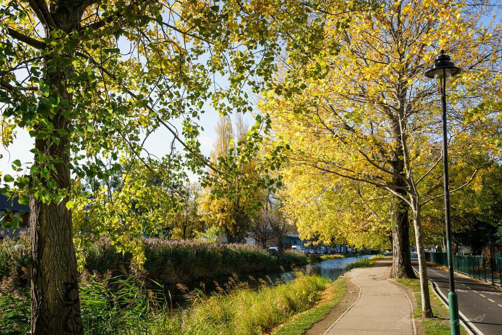 Autumn-Dublin-Sony-A6000-31.jpg