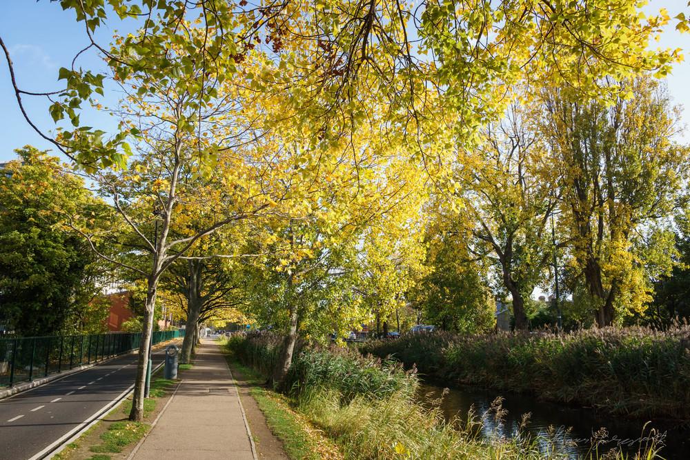 Autumn-Dublin-Sony-A6000-28.jpg