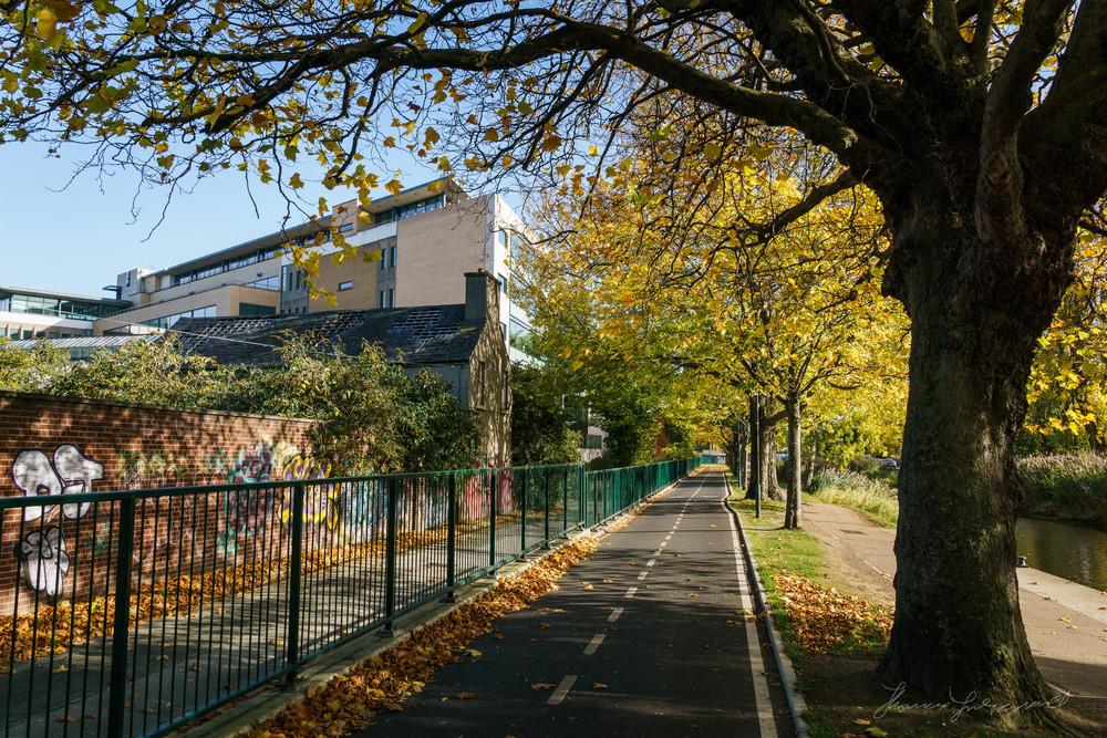 Autumn-Dublin-Sony-A6000-27.jpg