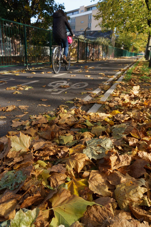 Autumn-Dublin-Sony-A6000-23.jpg