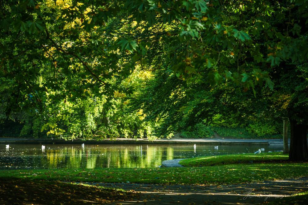 Autumn-Dublin-Sony-A6000-12.jpg