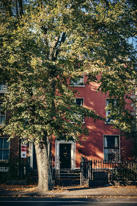Autumn-Dublin-Sony-A6000-05.jpg