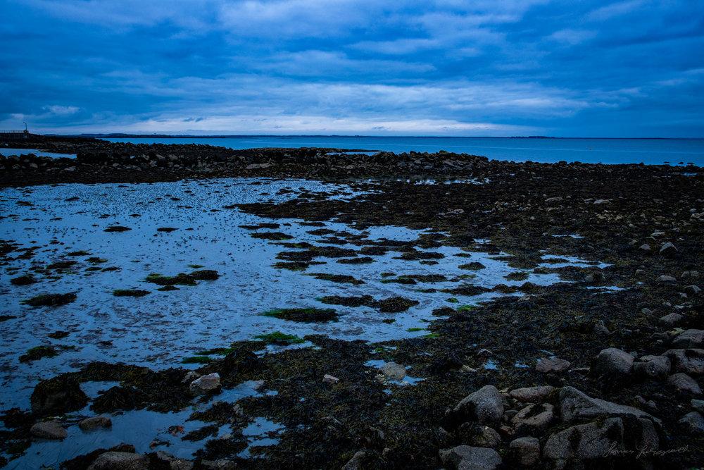Galway-Solstice-12.jpg