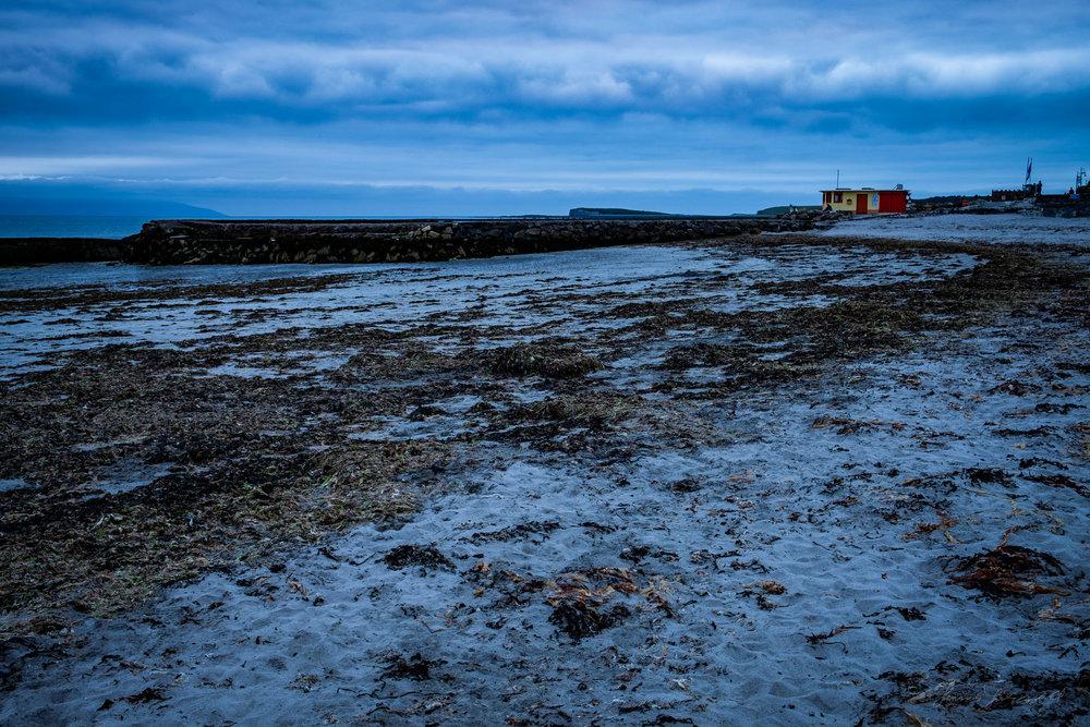 Galway-Solstice-10.jpg
