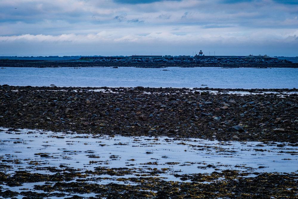 Galway-Solstice-2.jpg