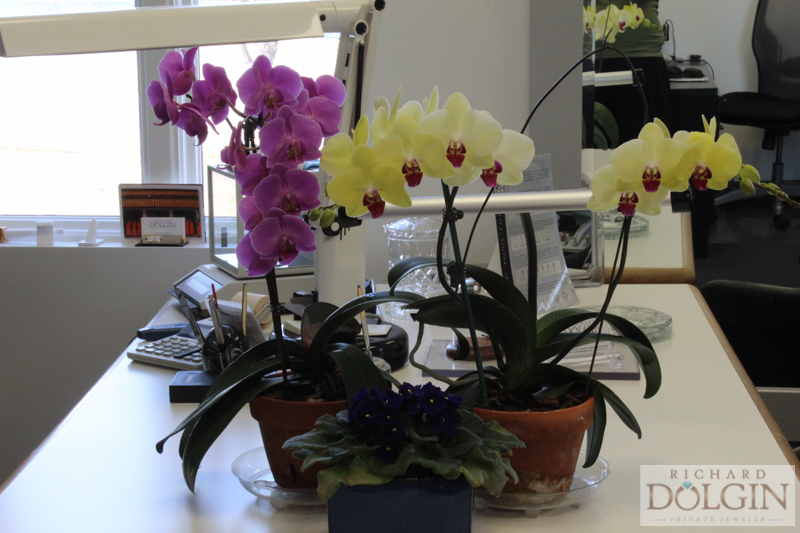 Flowers in our jewelry studio