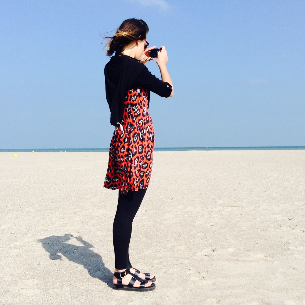 Taking in the Scenery at Dunkirk Beach.jpg
