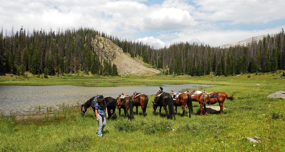 Horseback Excursion on our Wyoming Retreat