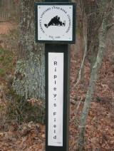 Ripley's Field Landbank Property