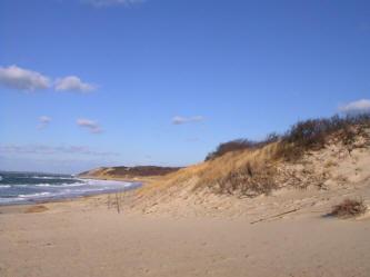 Lambert's Cove Beach.jpg
