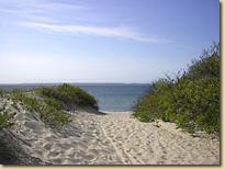 Lambert's Cove Beach 1.jpg