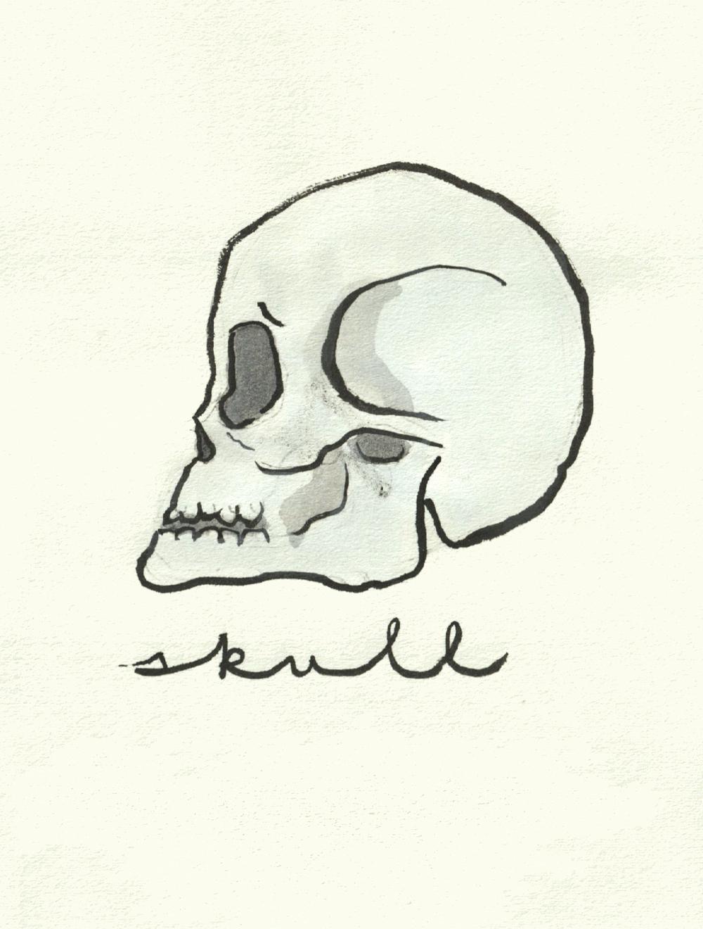 S_Skull.jpg