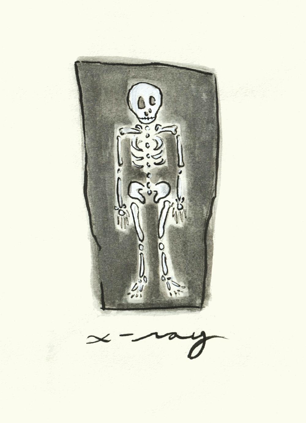 X_X-Ray.jpg