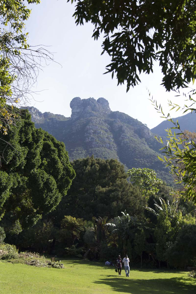 Victoria-Riza Travels | The Kirstenboche Botanical Gardens | Cape Town, South Africa