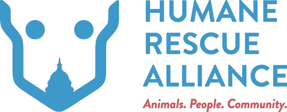 Washington DC Humane Rescue Alliance Photographer / Photography