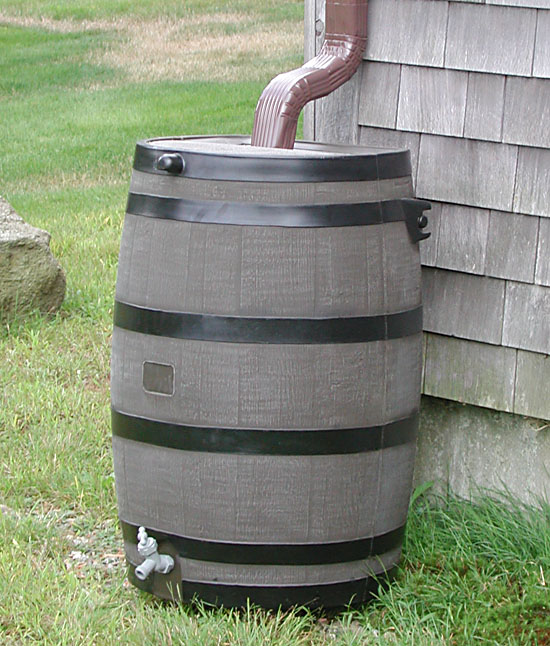 Image result for rain barrel images