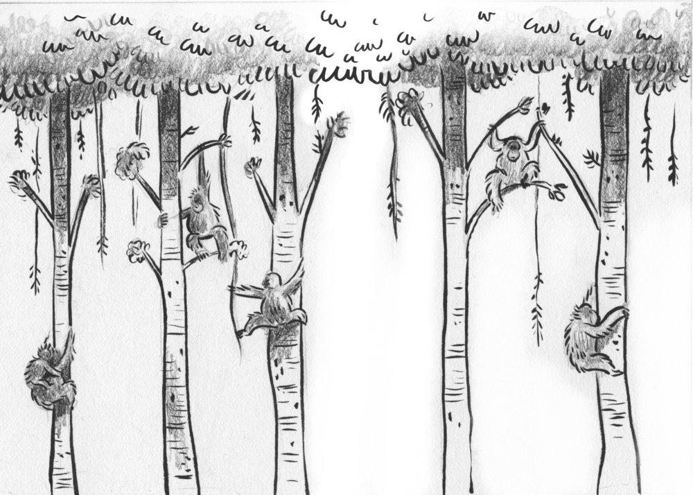 treedancers_0008_16-17.jpg