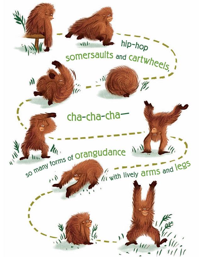 Orangutanka5.jpg