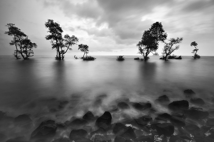 black-and-white: Photography by Arnov Setyanto