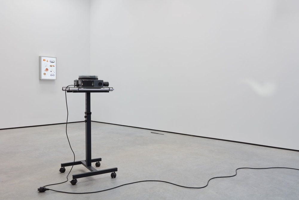 Installation at  Variation on Five . Photo by We Document Art.