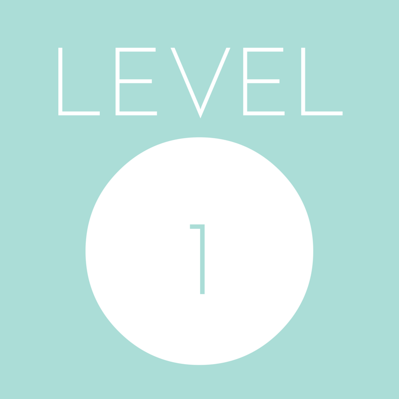 This level is for those who prefer to work at a slower, more moderate pace, or who have back and/ or joint problems.