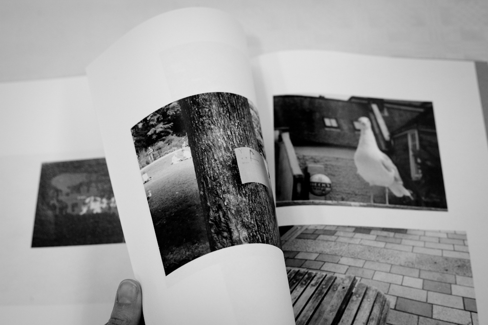 Photobook - Evolving In Conversation, displayed as part of Brighton Photography Biennial 2014