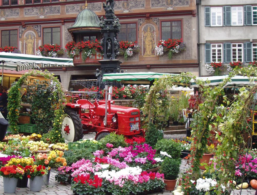Tübingen Markt.jpg