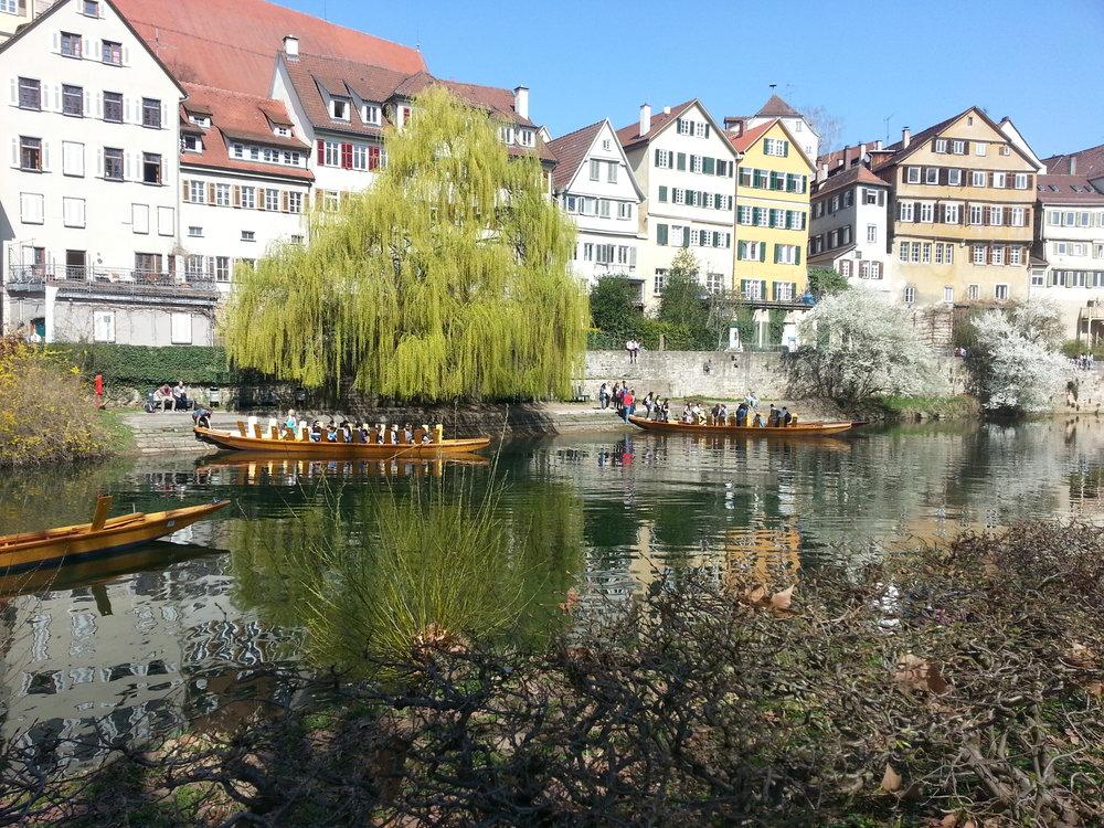 Neckar view 3.jpg