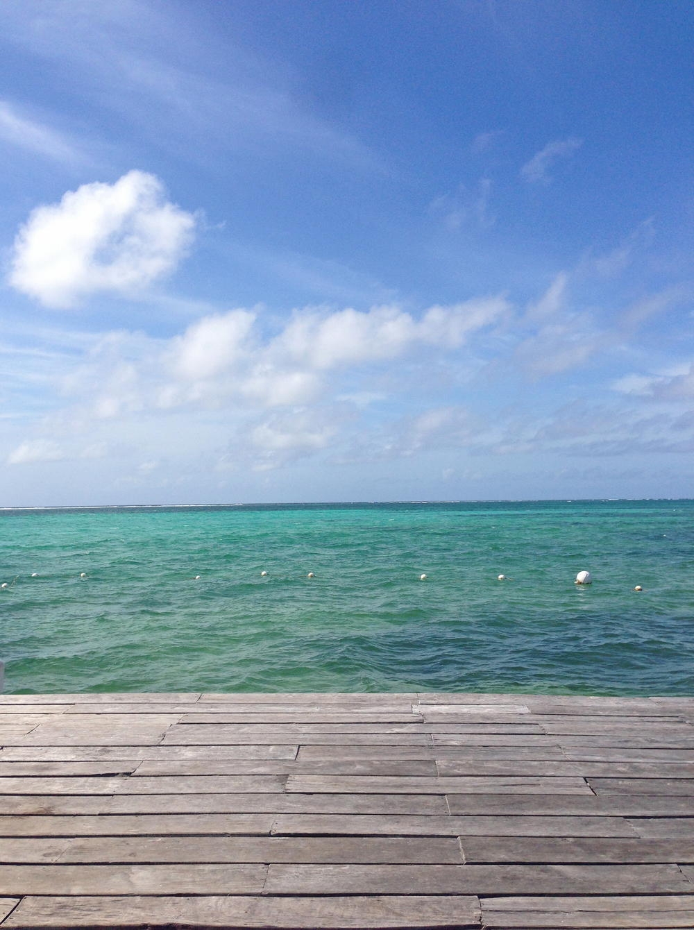 oceanphoto.jpg