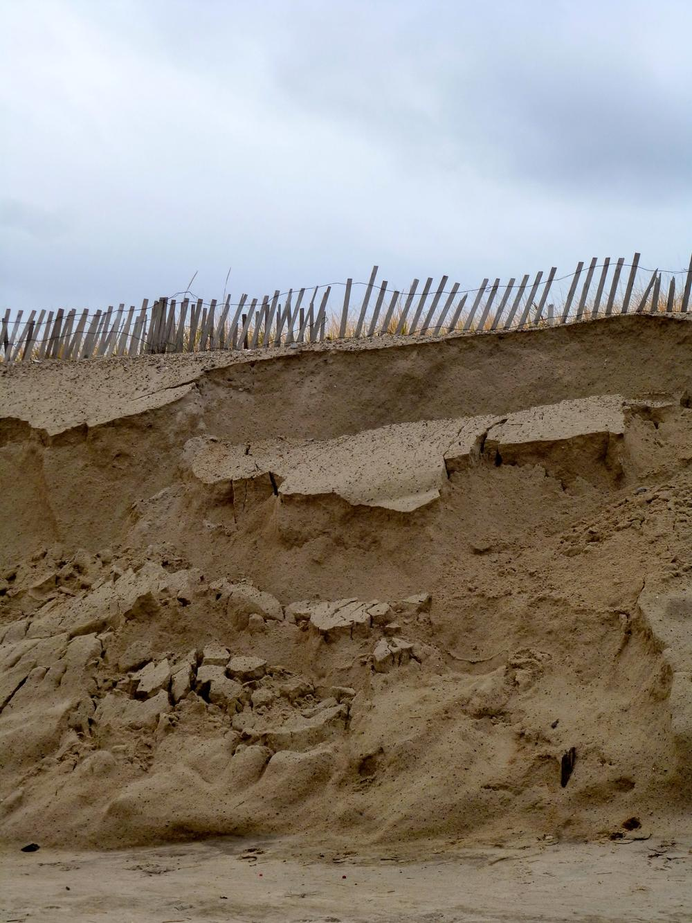 snow fences at Sandy Neck MA.jpg