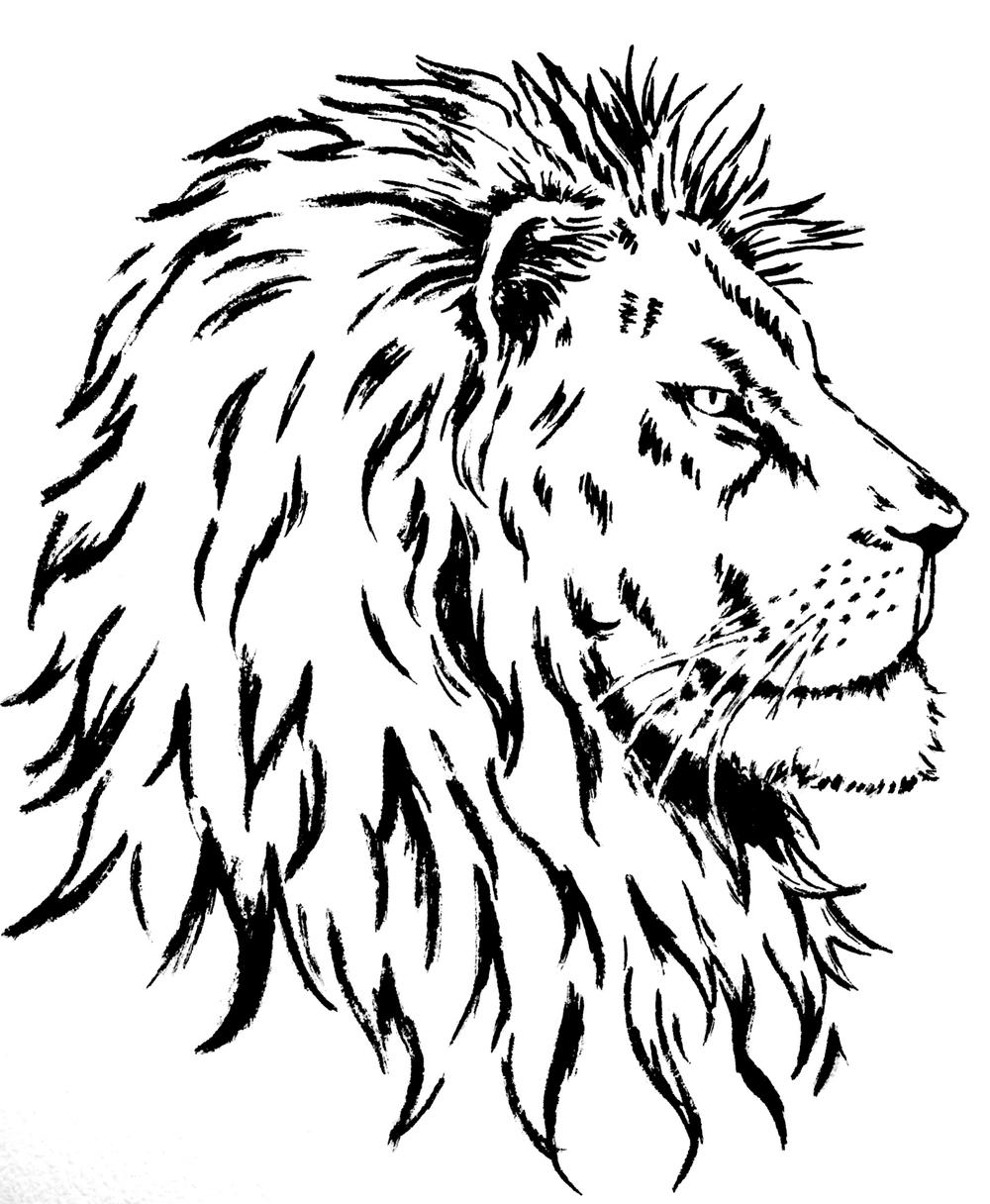 Save a Lion Shirt Design