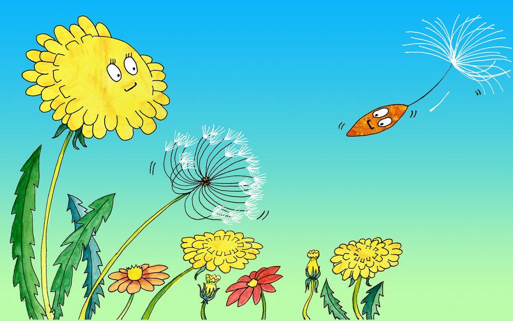 seed 5-6.jpg