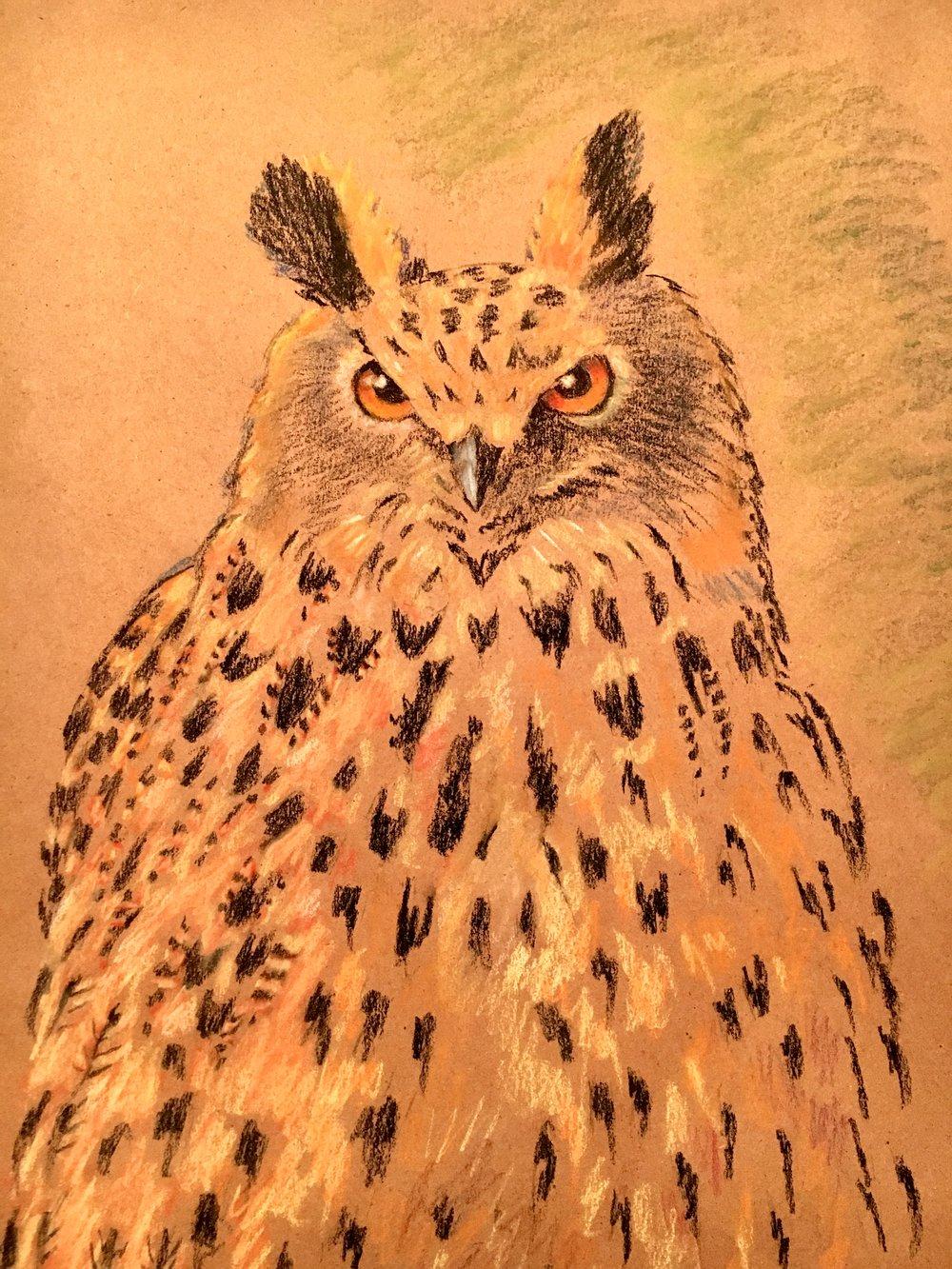 owl on craft p.jpg