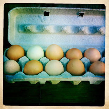 farmbox_eggs.jpg