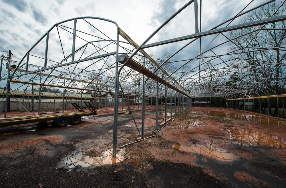 You can get an idea of the size of these three connected hoop houses here.  It also tells you how the wet weather has slowed construction down considerably.