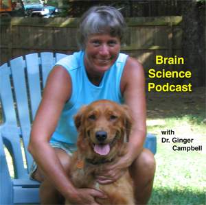 BrainScience-logo1.jpg