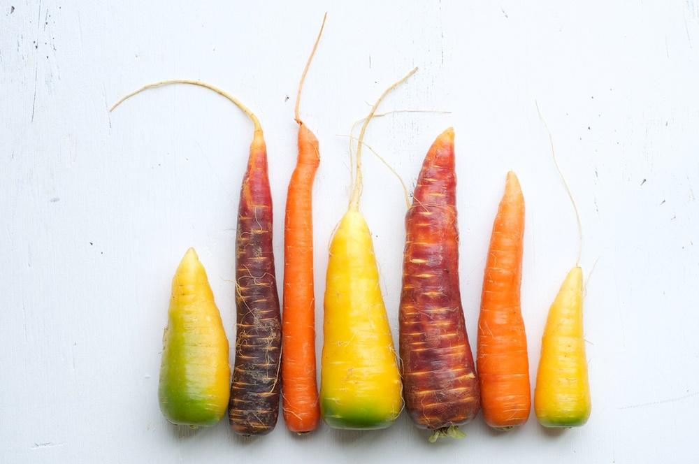 carrot_salad2 (1).jpg