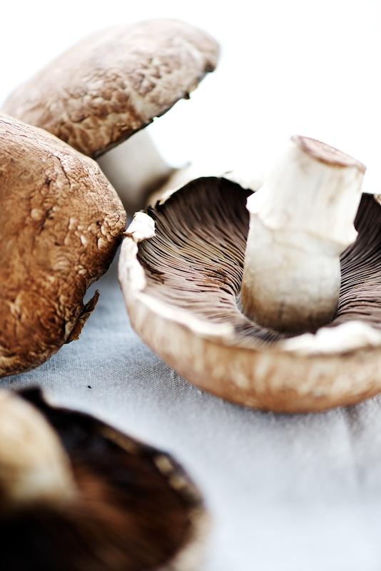 stuffed_mushrooms (1).jpg