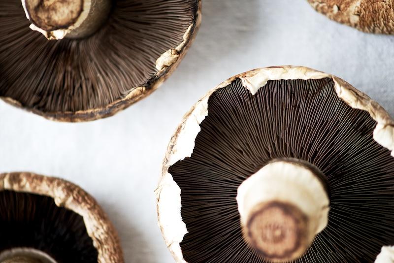 stuffed_mushrooms (3).jpg