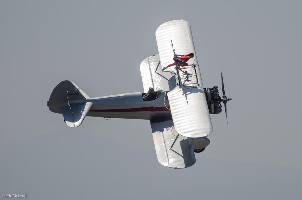 Silver Wing Walk Bank.jpg